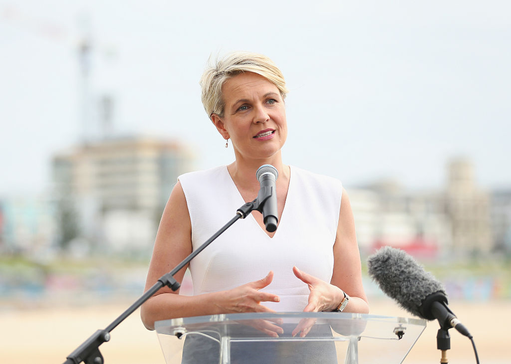 Article image for 'Not good enough': Tanya Plibersek calls for independent review after alleged rape of staffer