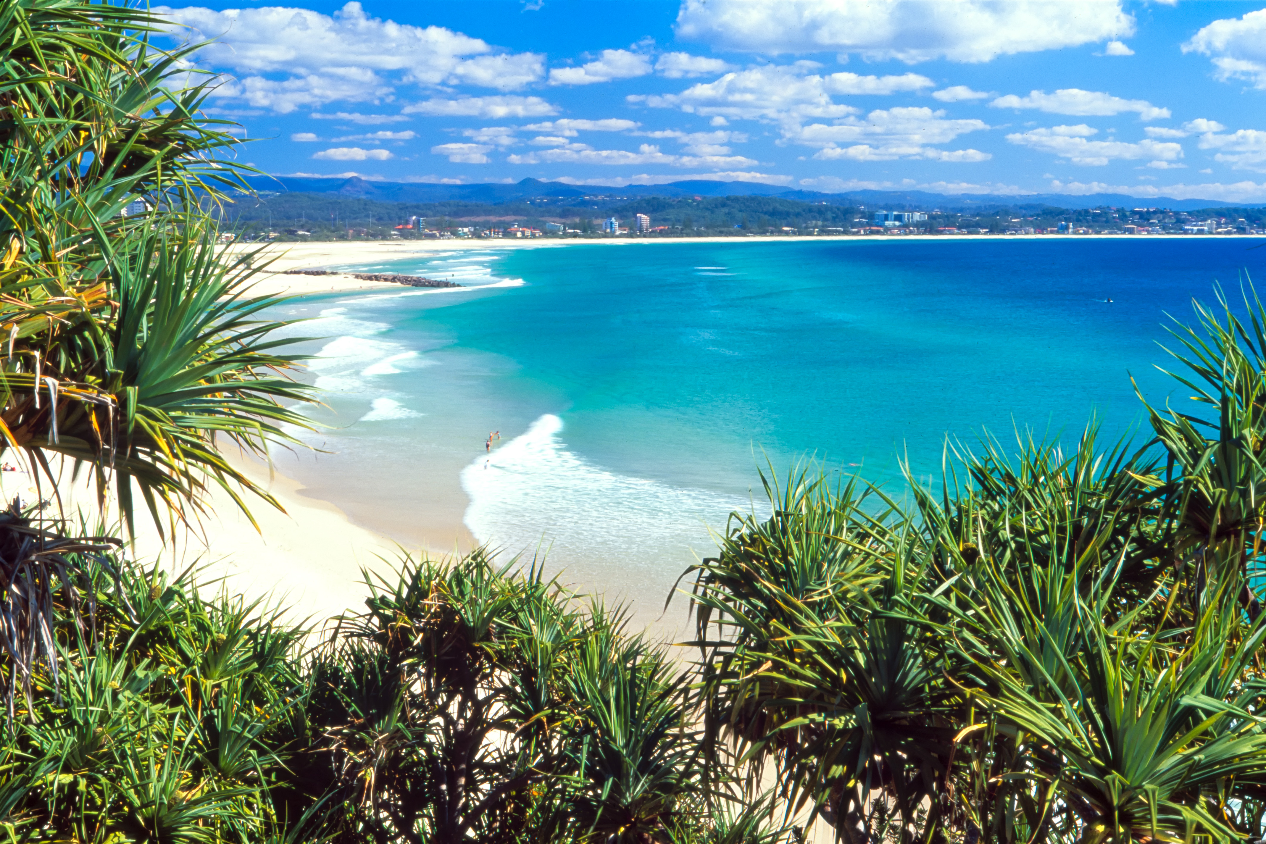 Article image for Gold Coast beaches re-open after horror weekend