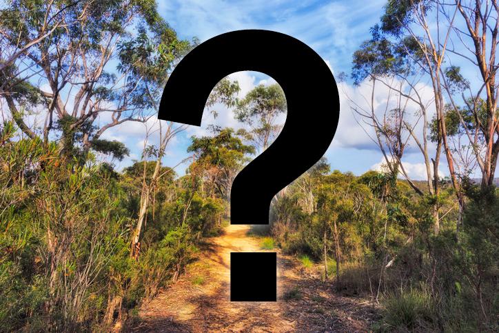 Australia's most deadly animal revealed