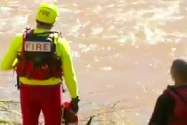 Article image for Police recover body in ute in search for missing man in flood waters