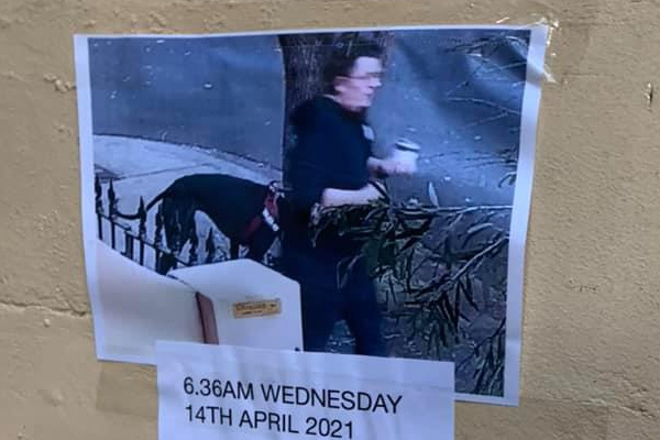 Article image for North Sydney community on the scent of a prolific 'bandit'