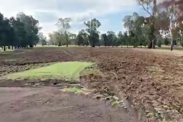 Man charged after NSW golf course 'ripped to pieces'