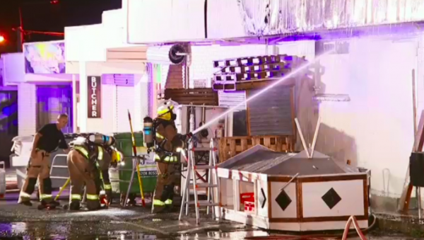 Article image for Fire rips through Brisbane businesses leaving several animals dead