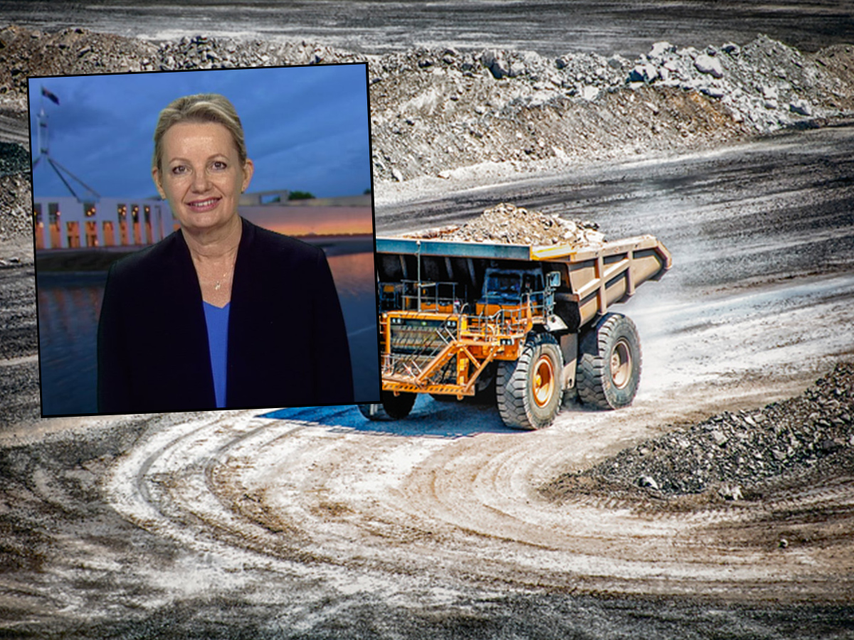 Article image for Federal Court rules Environment Minister has duty of care over climate change