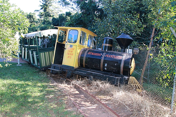 Article image for Big Pineapple train derailed and crashed in alleged joyride
