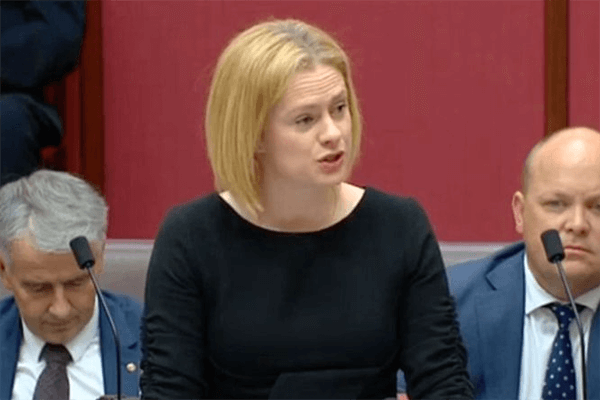 Article image for Senator 'really optimistic' Women's Safety Summit will succeed