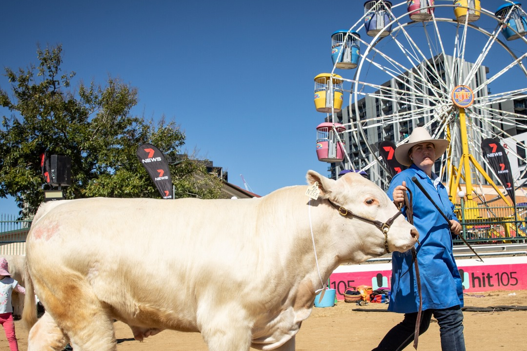 The biggest loss farmers face from the Ekka's cancellation