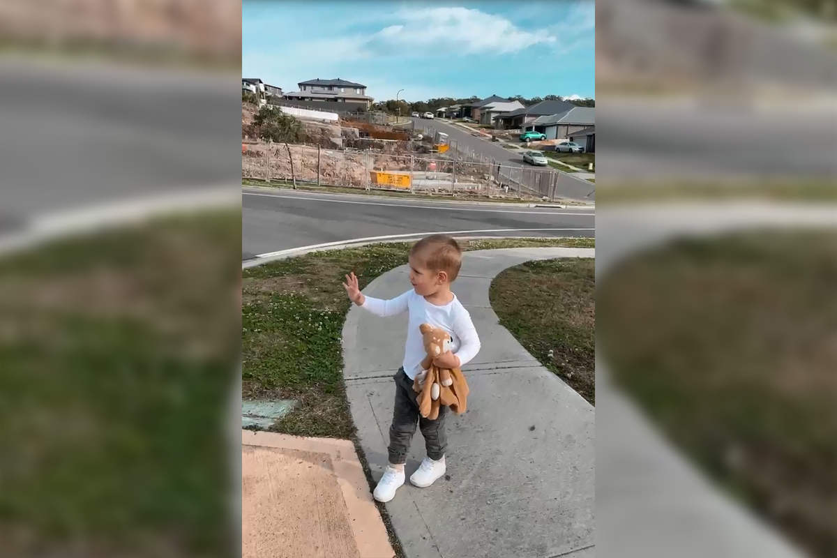 Article image for Ray Hadley shares adorable videos of his grandkids